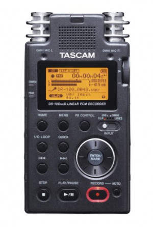 TASCAM DR-100mkII 2-Channel Portable Digital Recorder [Electronics]